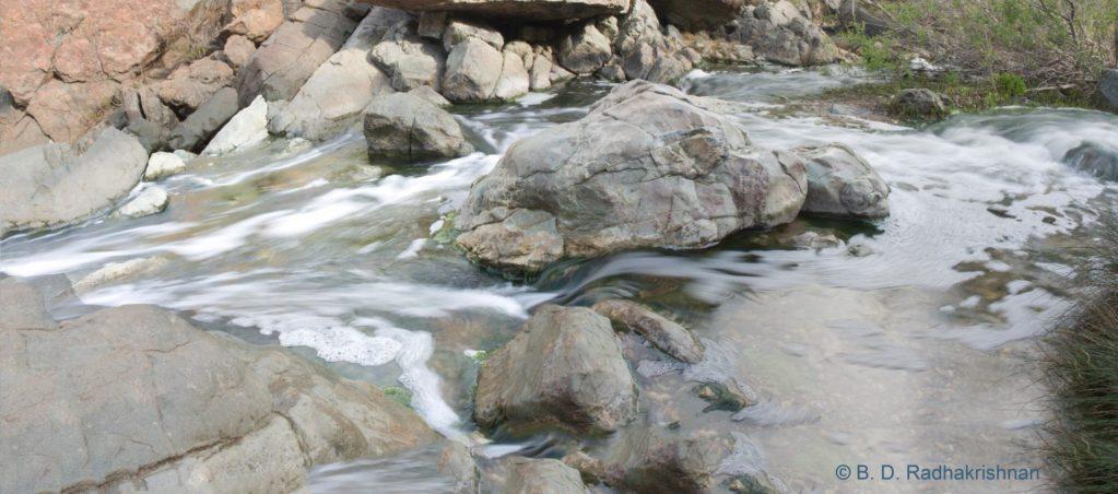Ben Radhakrishnan - Los Penasquitos Creek