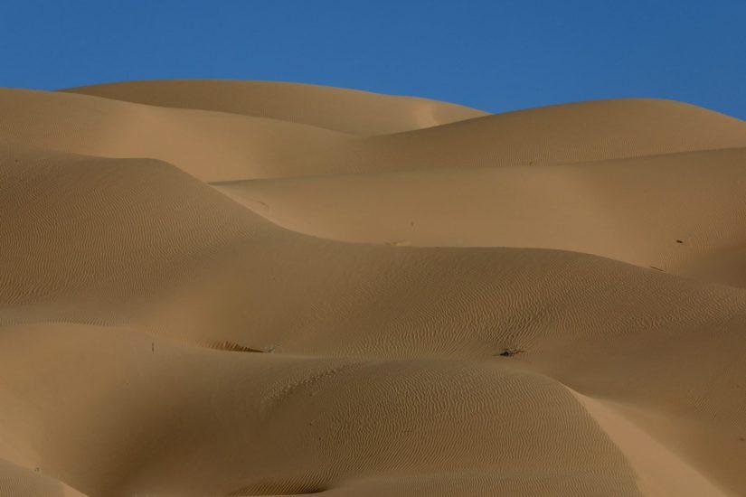 Steve Berry - Dune Lines
