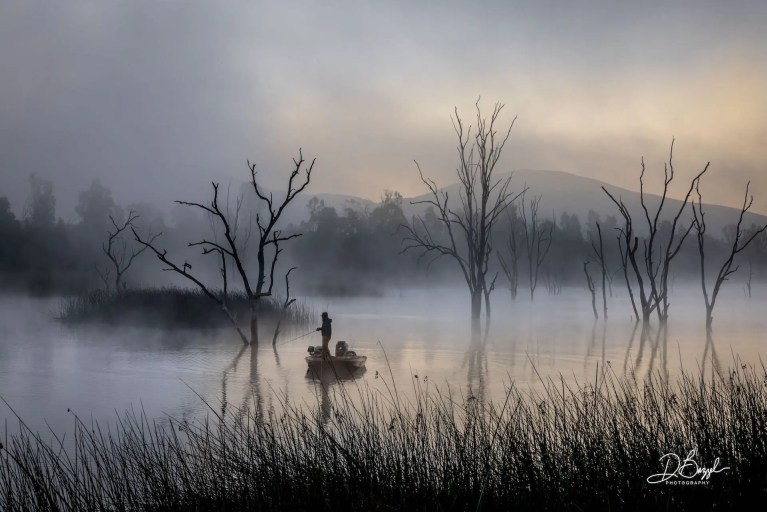 Duane Bazzel - Angler in the Mist