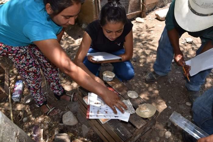 Polinizador. Proyecto sdsn mexico en desarrollo sostenible. impacto social. Paculca hidalgo.     Polinizador. Proyecto sdsn mexico en desarrollo sostenible. impacto social.