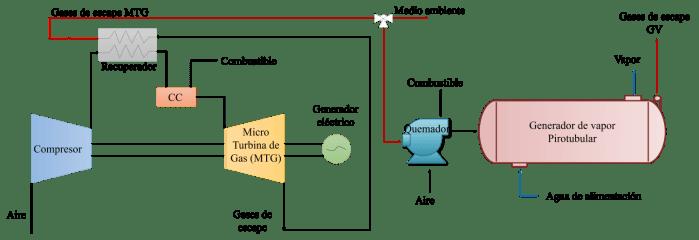 Micro-cogeneración Diagrama Esquemático