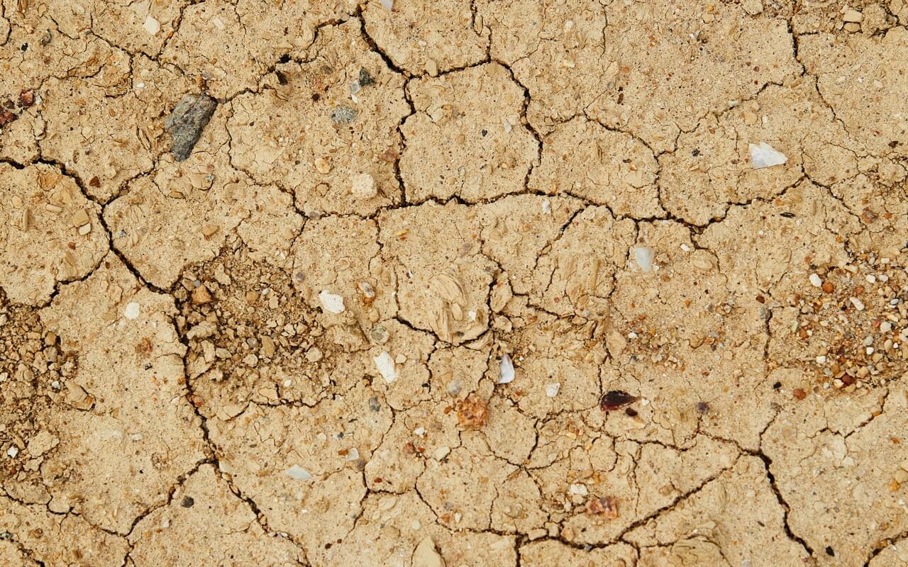 Cómo sortear las intensas sequías que se avecinan-Portada-SDSN-Mexico