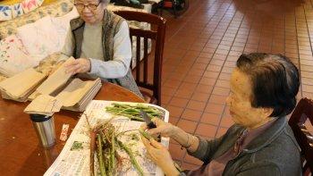 Permalink to: Day Care for Grandma and Grandpa