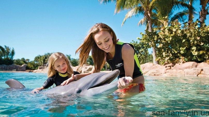 Дельфинарий в Геническе