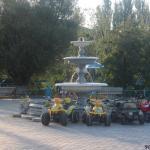 Пансионат Прибой: дендропарк на Арабатской стрелке