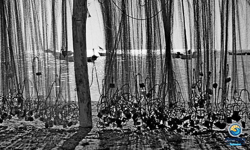 Александр Прихненко. Фотовыставка онлайн