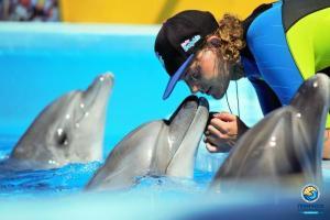 Открытие дельфинария Оскар- Геническ 2015