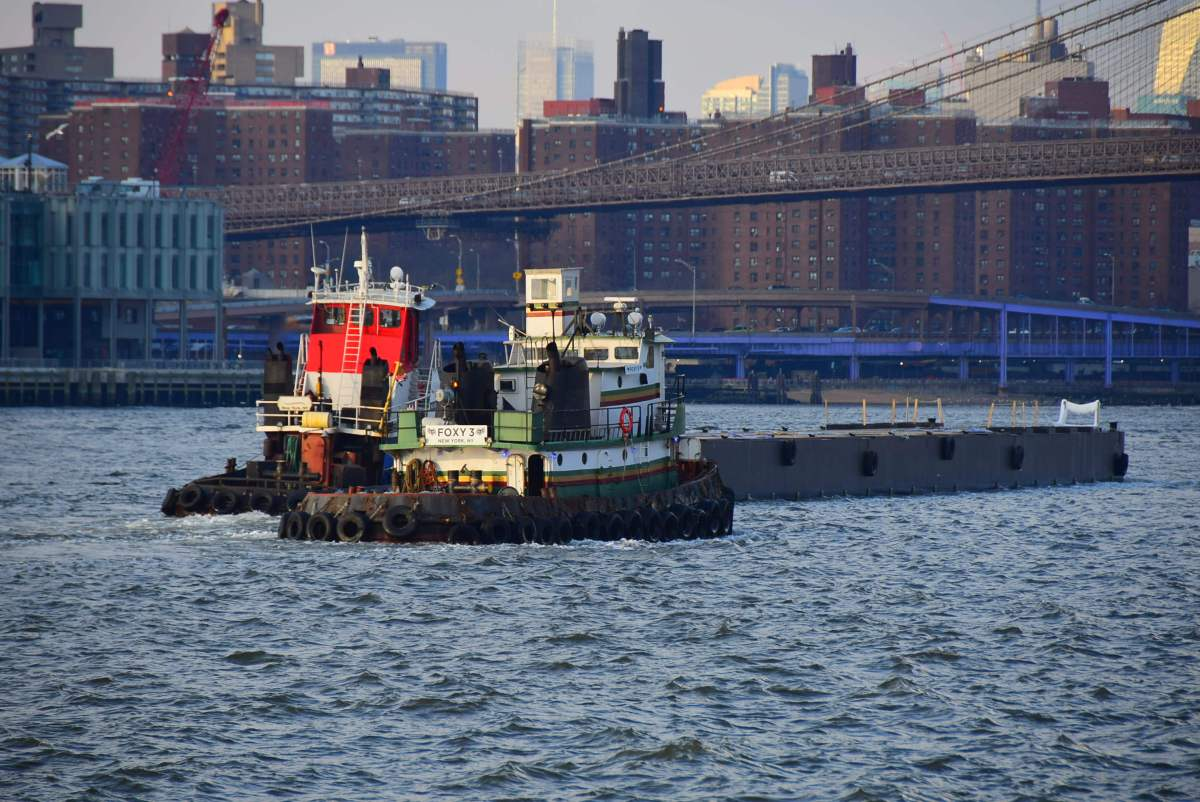 New York City Develops Marina For Recreation and Education