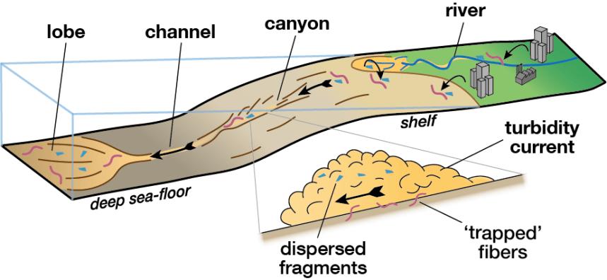 microplastics deep seafloor NOC