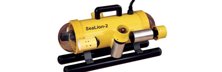 Sea-Lion 2
