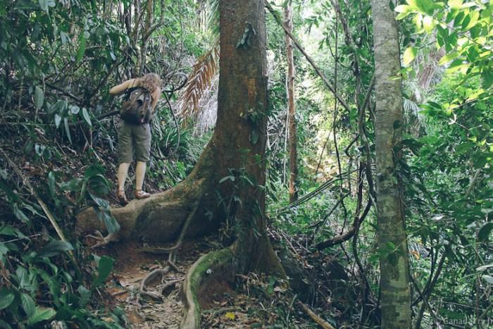 khao lak lamru national park