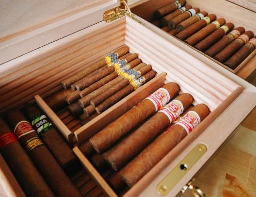 cave à cigares pleine