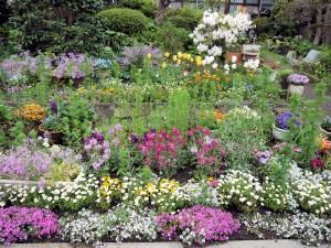 garden0414