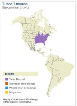 Range Map of Tufted Titmouse - Cornell Lab of Ornithology