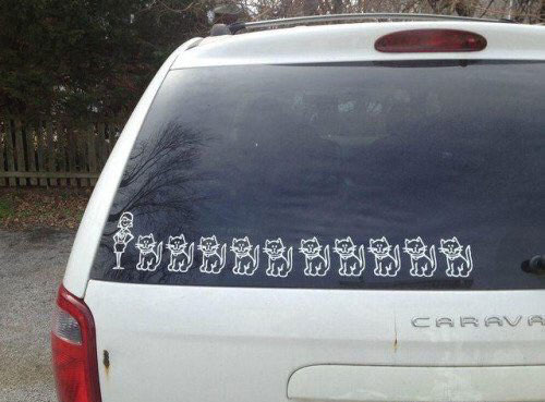 Crazy cat lady car