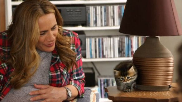 Whanau Living presenter Jenny-May Clarkson meets Siberian kitten JoJo.