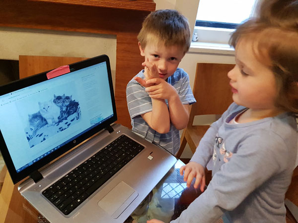 children looking at kittens website