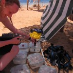 A woman is kneeling on a beach, leaning over some clear, pots containing sea water samples.