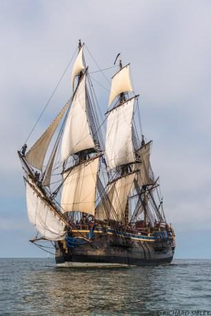 Aarhus to Helsinki Tall Ships Race 2013