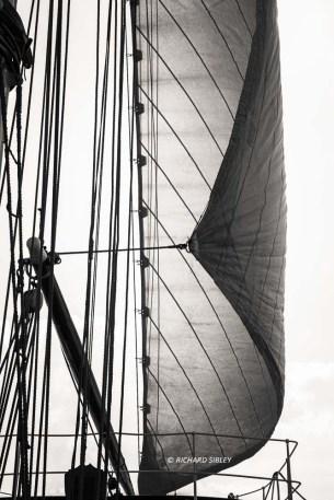 Parade of Sail, onboard the Dutch Schooner Gulden Leeuw