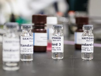 small vials of saxitoxin in a lab
