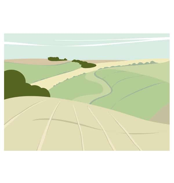 Near Fridaythorpe - Landscape