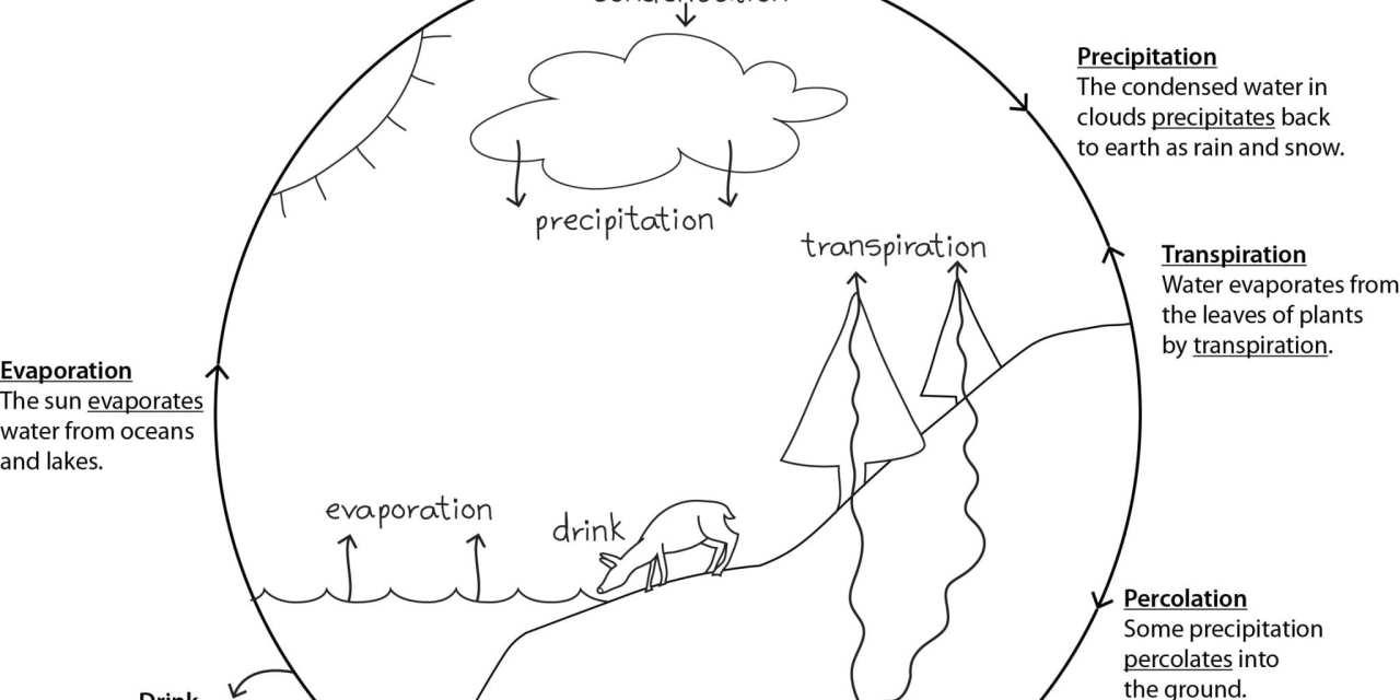 Teaching a homeschool science co-op: General Notes