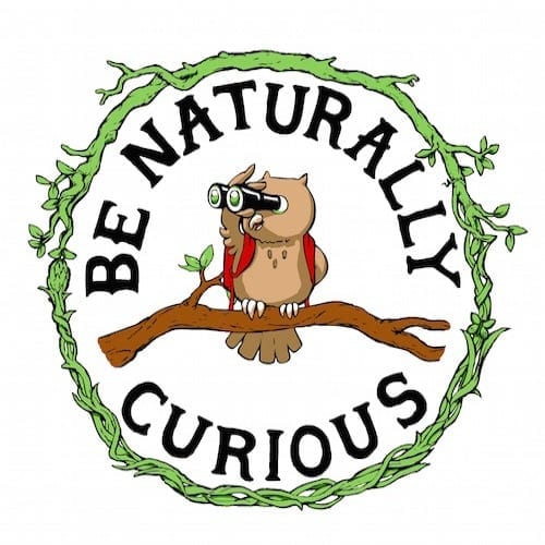 Be Naturally Curious