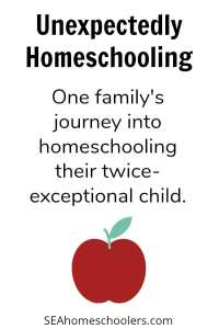 Secular Homeschooling - Unexpectedly homeschooling a twice exceptional child