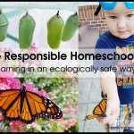 The Responsible Homeschooler