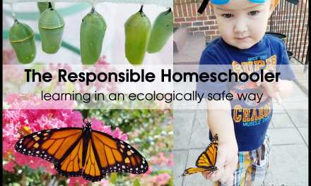 The Responsible Homeschooler