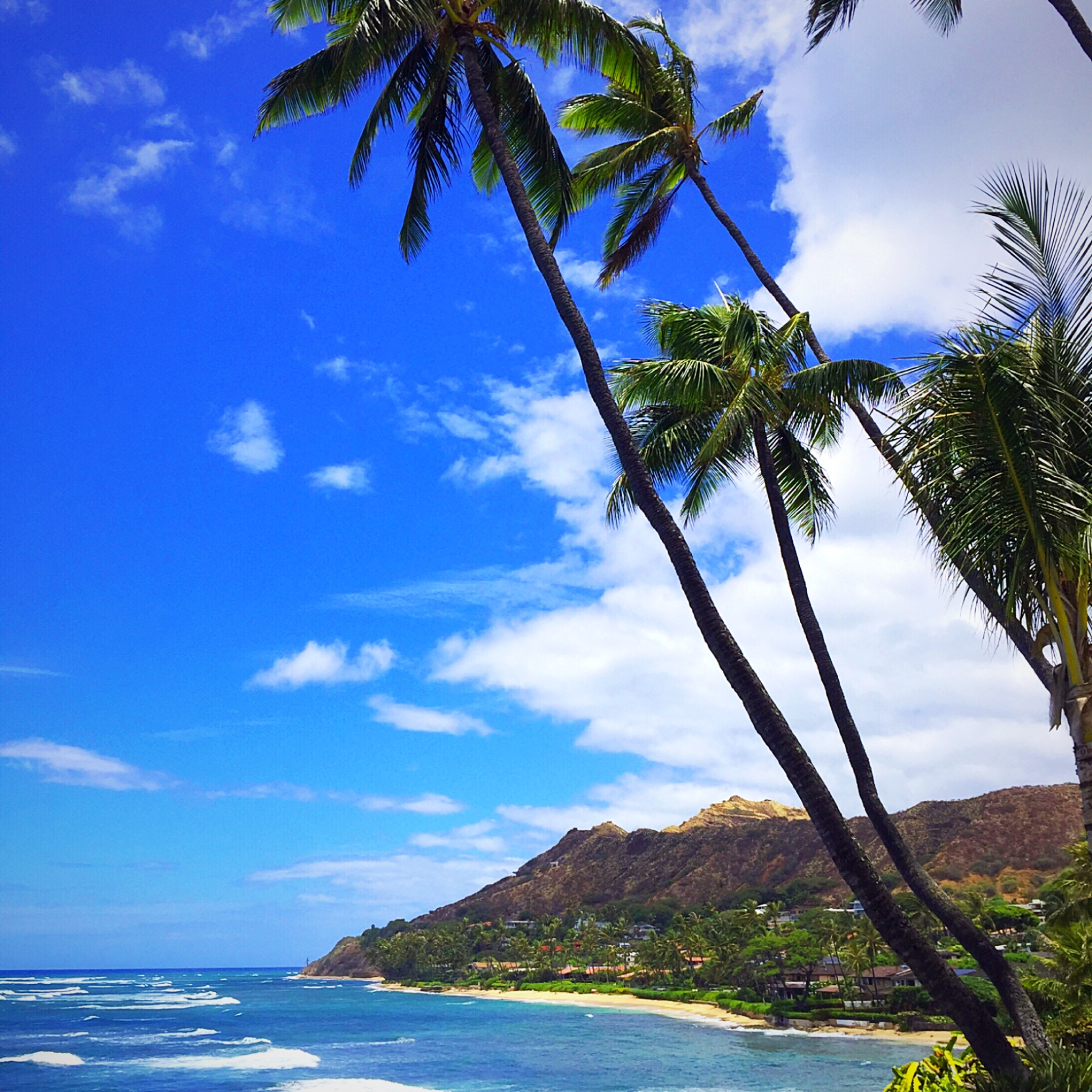 10 Photo S That Will Make You Want To Travel To Oahu