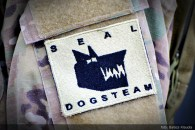 SEAL DOGS TEAM