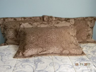 Pillow covers 10-2011