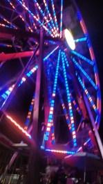 Camp Flog Gnaw Wheel