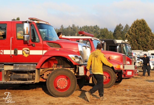 fire engines in morning light, August Complex 2020 Eel River California image by Teresa Sigmon