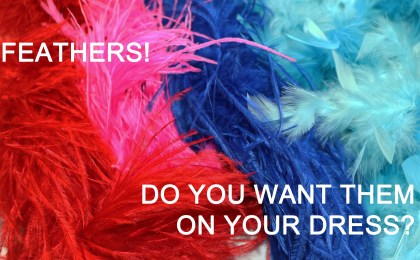 Feathers are hot in the Dancesport, Country and Skate world. Do you want them on your dress?