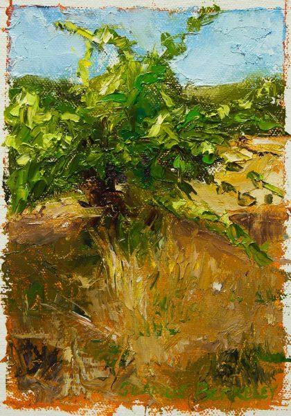 Sonoma-Dagovitz-Vineyard-Painting-Study-Seamus-Berkeley