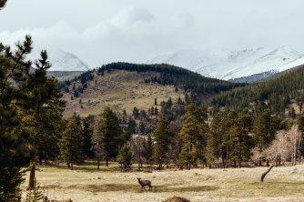 Estes Park Colorado Rocky Mountains-7