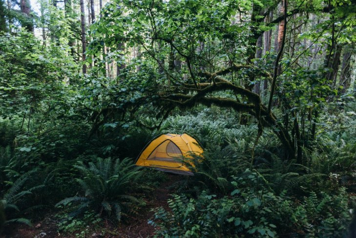 Mount St. Helens camping