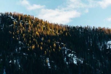 Winter Park Colorado Mountains-22