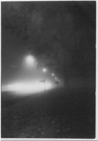 foggy night (2004)
