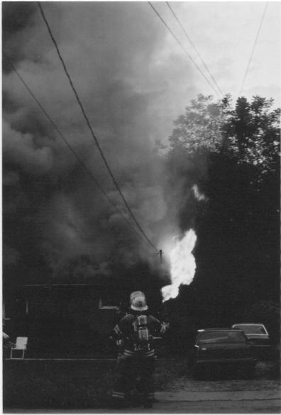 foreman and smoke (2003)