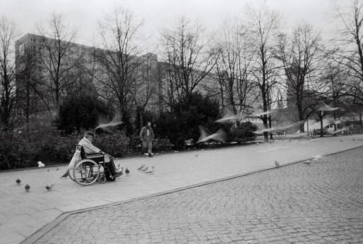 man and birds berlin