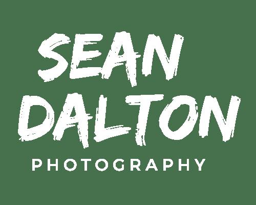 Seandalt logo