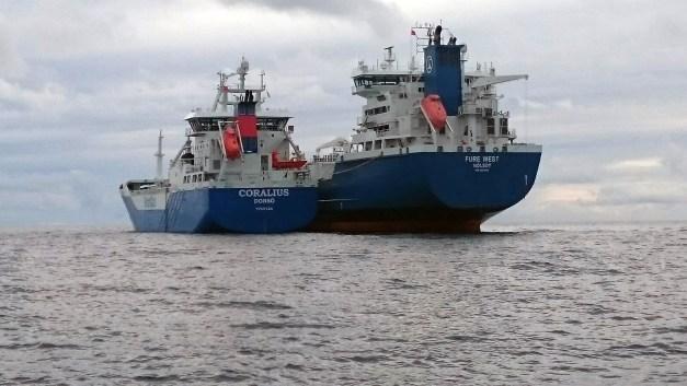 Resultado de imagem para Coralius Ship-to-ship