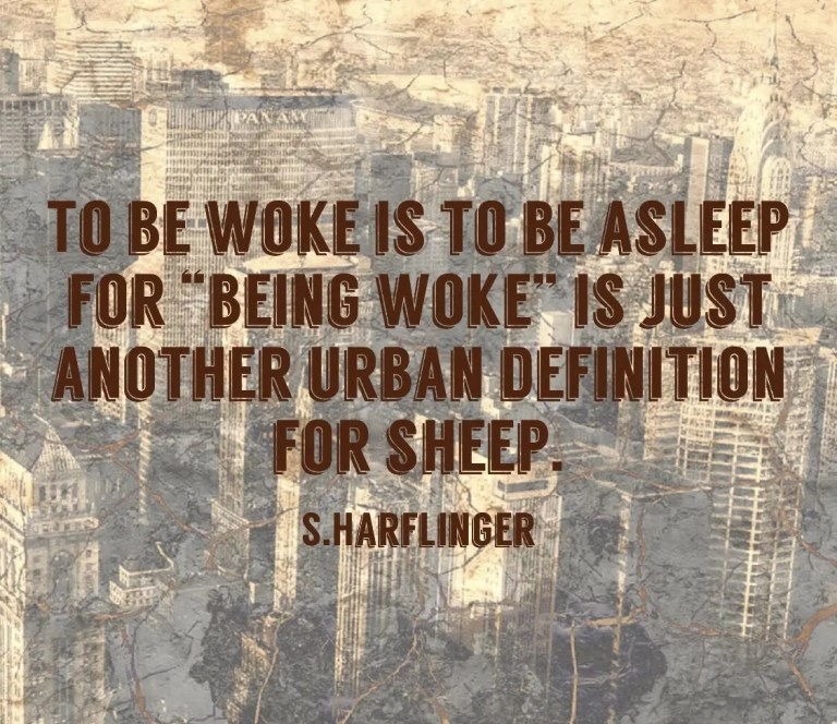 Stop counting sheep and wake up..