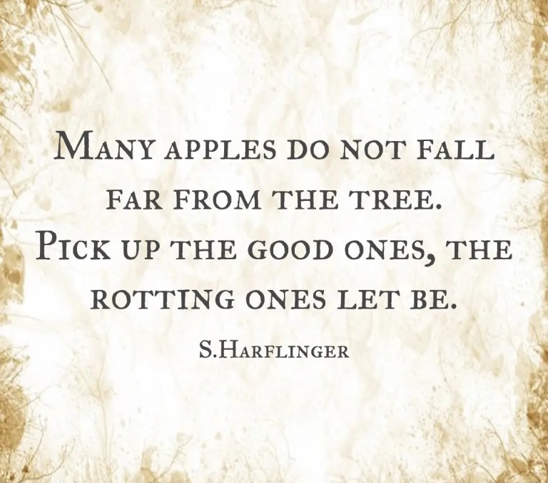 I've seen a few rotten apples and a few rotten trees.