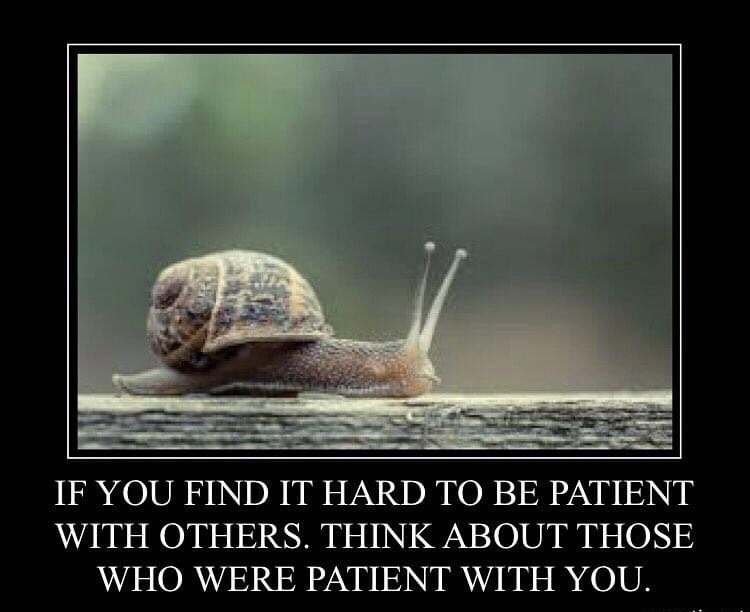 The slow crawl towards patience is worth it.