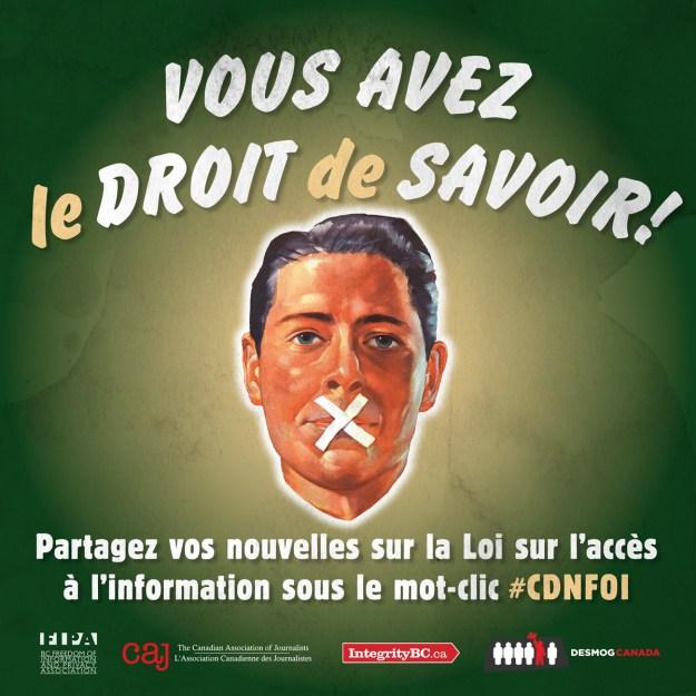 #CDNFOI FRENCH1